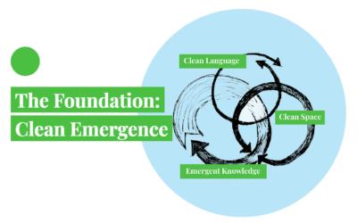 Clean Emergence and David Grove (English)