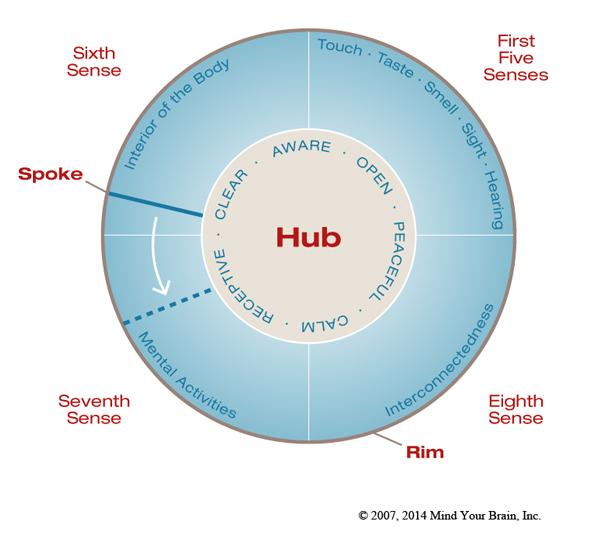 Dan Siegel's Wheel of Awareness Meditation